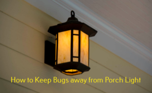 Bugs on porch light control